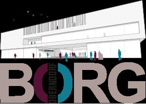 Logo BORG Oberndorf
